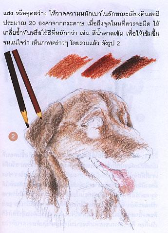 สอนวาดด้วยสีไม้